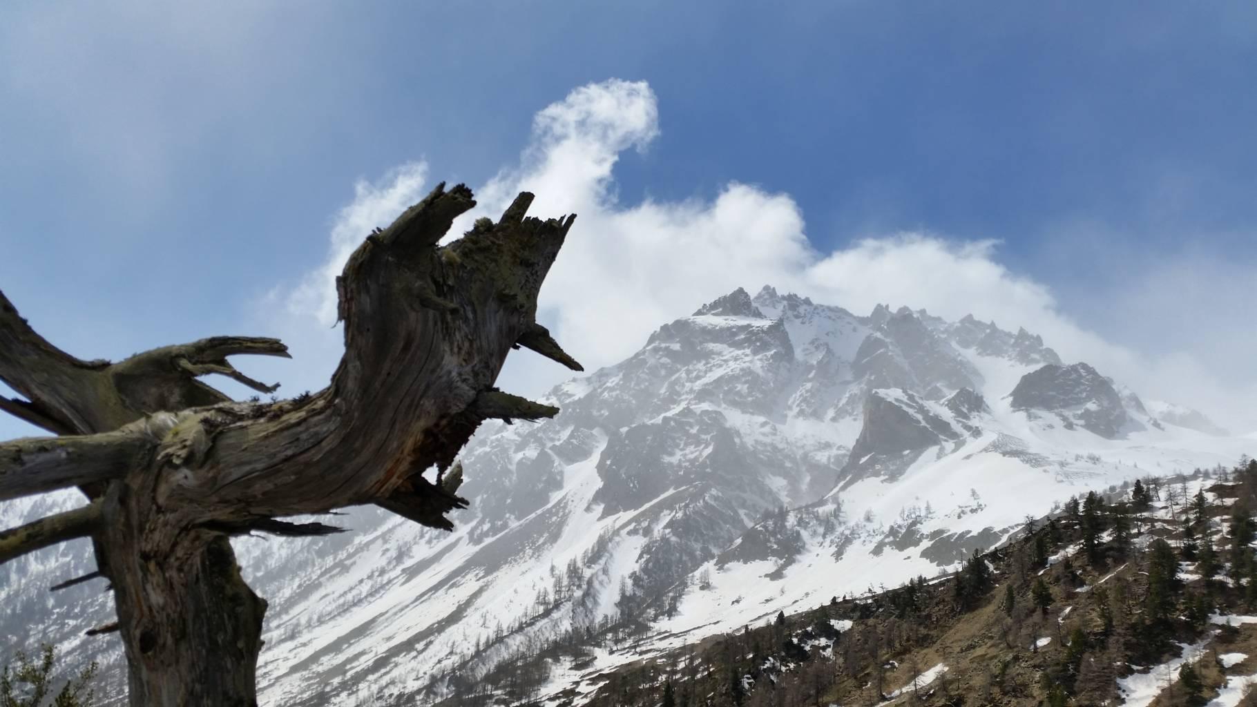 La montagnaterapia
