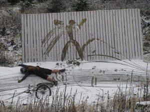 neve e cultura
