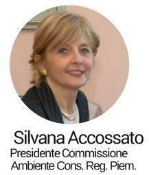 Silvana Accossato