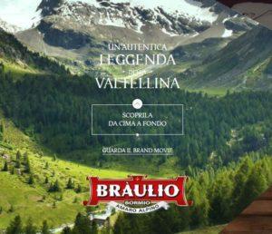 Dalla homepage del webite Braulio.