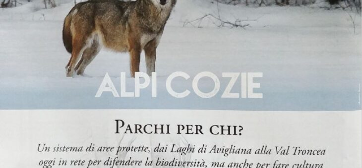 Alpi Cozie. Parchi. Per chi ?
